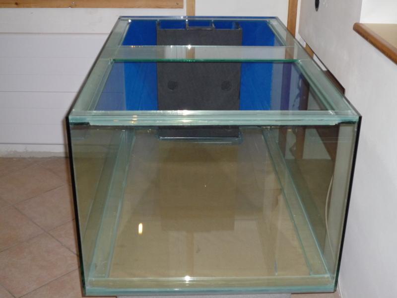aquarium sur mesure conception et installation